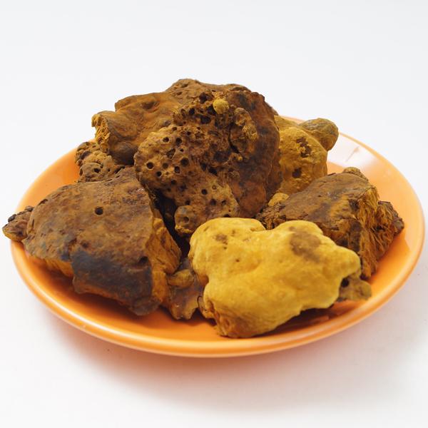상황버섯(목질진흙버섯)50g/상황버