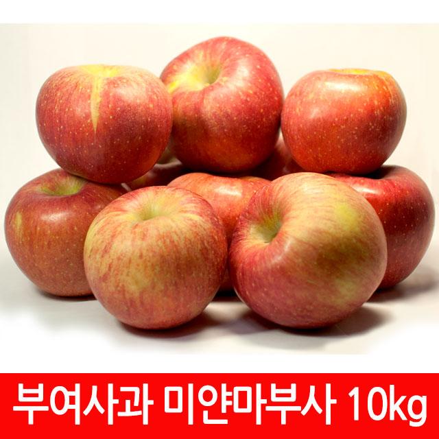굿뜨래 부여 부사사과 10kg/햇사과/겨울사과